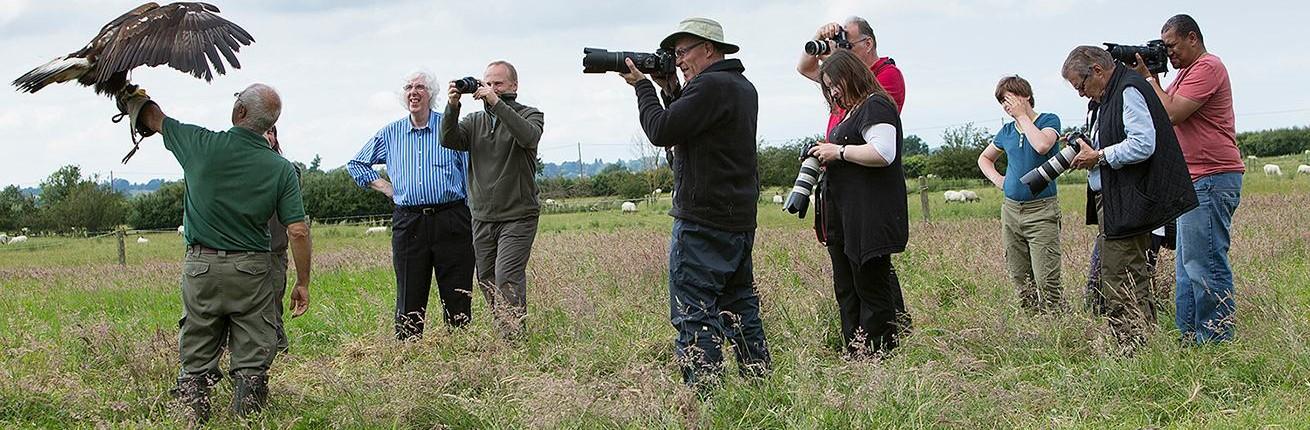 Birds of Prey Photography Training
