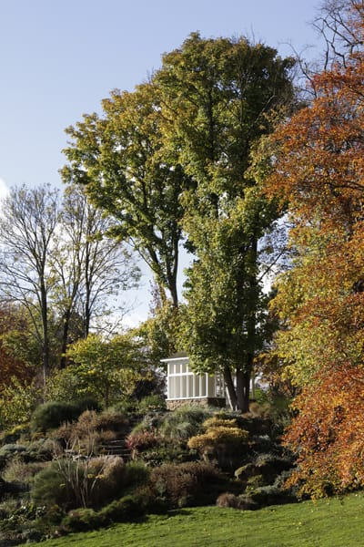 Landscape, Architecture and Garden Photography